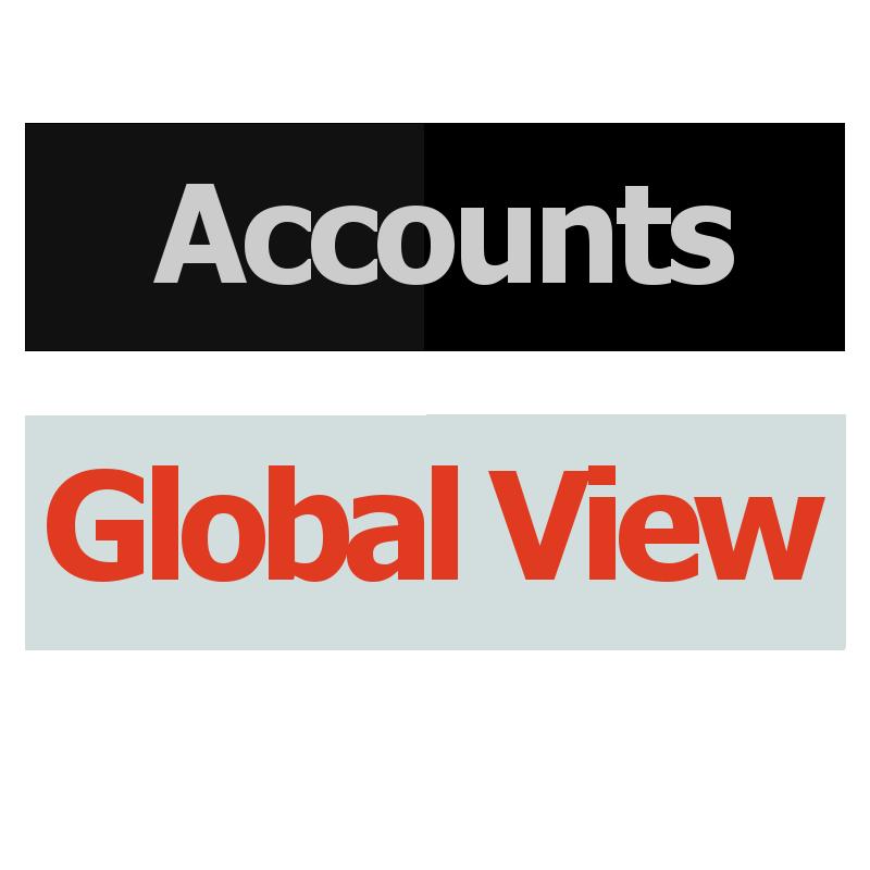 Accounts Global View Logo