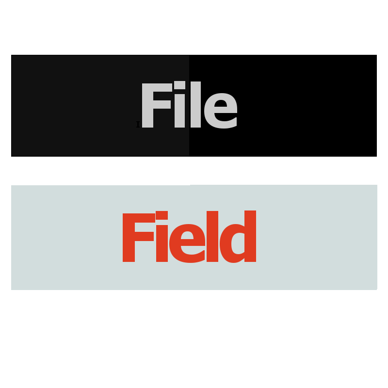 File Field Logo
