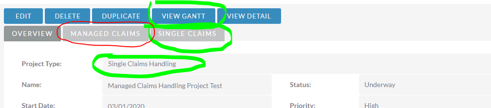 Gantt View_Incorrect.PNG